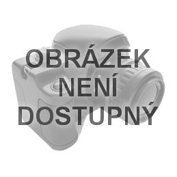 Dámský holový deštník BARI černo-stříbrný